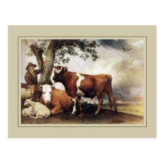 "Alfarero de Paulus, ""Bull joven"" 1647 Postales"