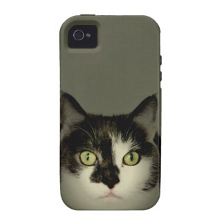 Alfie Vibe iPhone 4 Cover