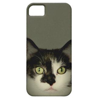 Alfie iPhone 5 Case