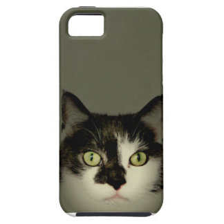 Alfie iPhone 5 Cover