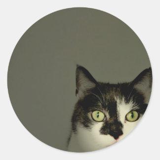 Alfie Classic Round Sticker