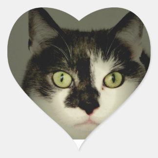 Alfie Heart Sticker