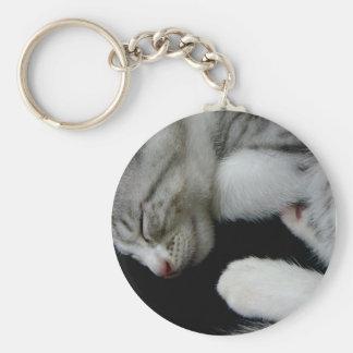 Alfie kitten keychains