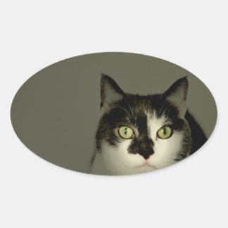 Alfie Oval Sticker