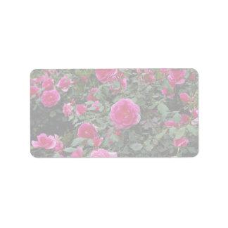 Alfie precioso 'Poulfi color de rosa miniatura Etiqueta De Dirección