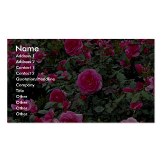 Alfie precioso 'Poulfi color de rosa miniatura Tarjetas De Visita
