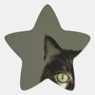 Alfie Star Sticker