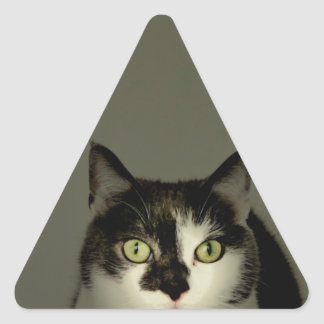Alfie Triangle Sticker