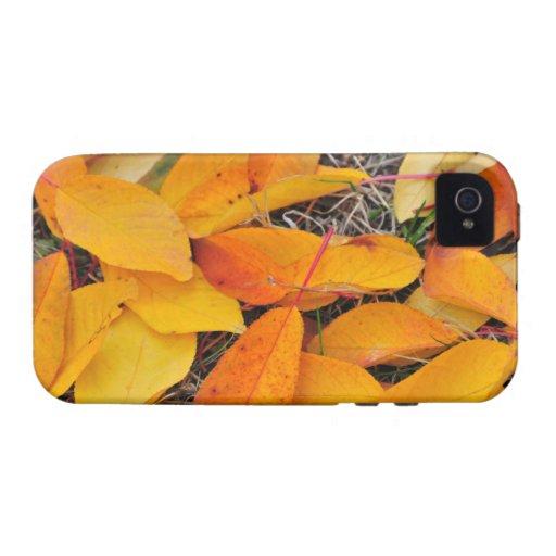 Alfombra amarilla de la hoja iPhone 4/4S carcasa