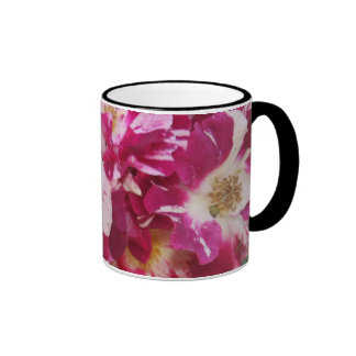 Alfombra color de rosa taza de dos colores