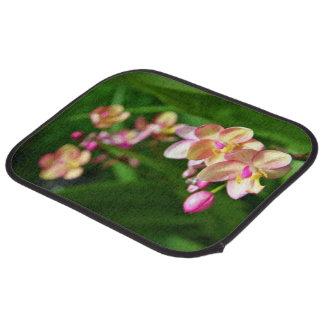 Alfombrillas de auto del Orchidaceae Alfombrilla De Coche