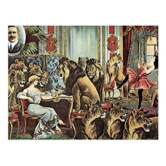 Alfred Schneider Lions In Parlour Vintage Theater Postcard
