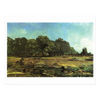 Alfred Sisley - La Celle-Saint-Cloud 1865 Chestnut Post Card