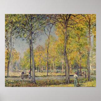 Alfred Sisley | The Bois de Boulogne Poster