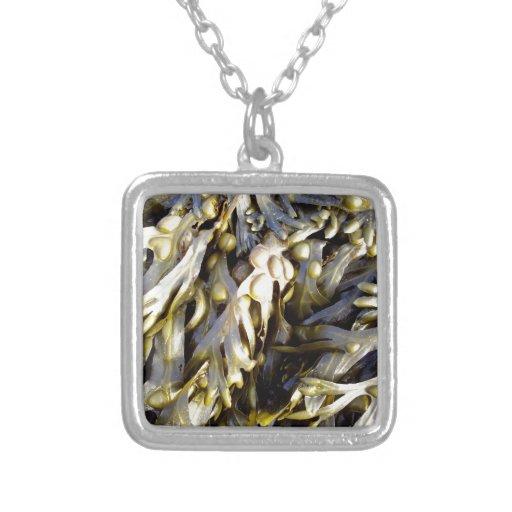 Alga marina colgantes personalizados