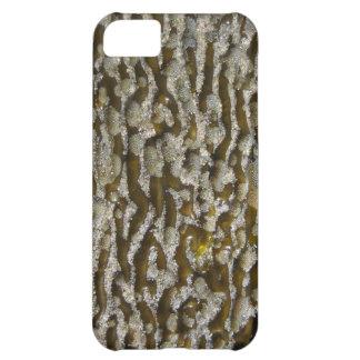 Alga marina - compañero del caso del iPhone 5
