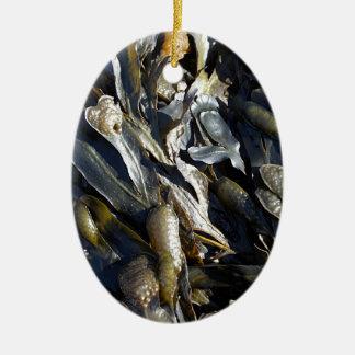 Alga marina adorno ovalado de cerámica