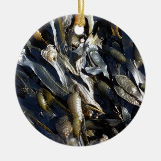 Alga marina adorno redondo de cerámica