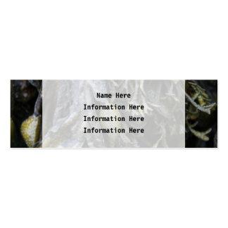 Alga marina tarjetas de visita mini
