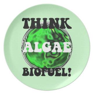 algae biofuel melamine plate