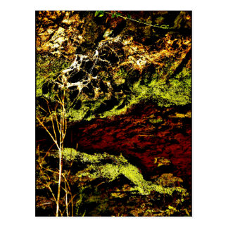 """Algae Canal Fallon"" JTG Art Postcard"