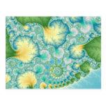 Algae - Fractal Post Card