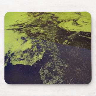 Algae Pad Mouse Pad
