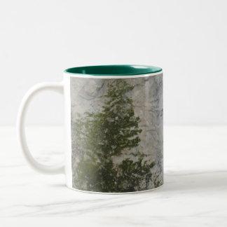 Algae Rock Mug