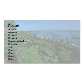 Algal Beach Business Card