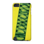 Algas verdes de Spirogyra Carcasa Para iPod Touch 5G