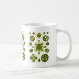 Algas verdes taza clásica