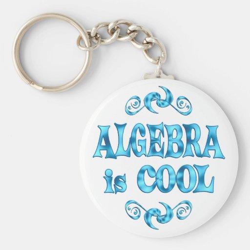 Algebra is Cool Key Chain