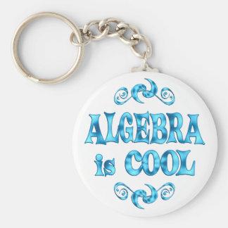 Algebra is Cool Basic Round Button Keychain
