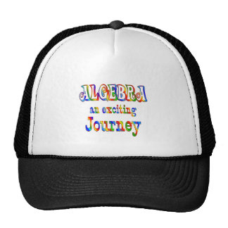 ALGEBRA is Exciting Hat