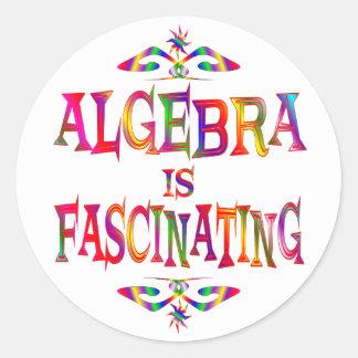 Algebra is Fascinating Classic Round Sticker
