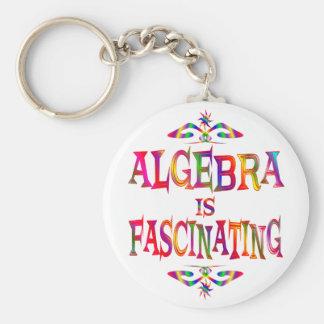 Algebra is Fascinating Basic Round Button Keychain