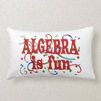 Algebra is Fun Throw Pillow