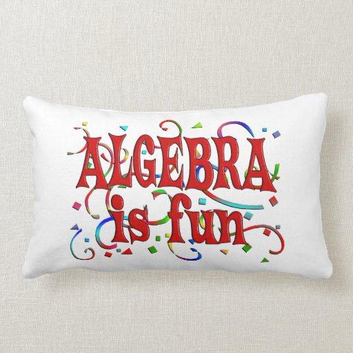 Fun Throw Pillows For Couch : Algebra is Fun Throw Pillow Zazzle