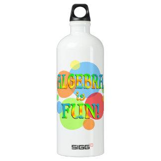Algebra is Fun Water Bottle