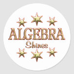 Algebra Shines Round Stickers