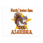 Algebra Squirrel Postcards