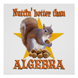 Algebra Squirrel Poster