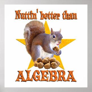 Algebra Squirrel Poster