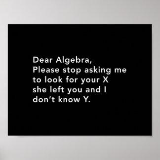 Álgebra y su X Póster