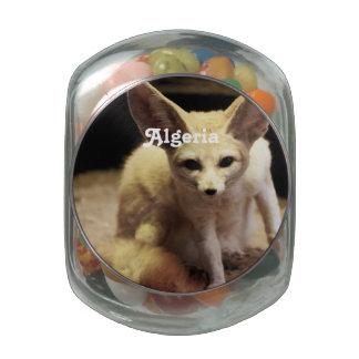 Algeria Fennec Fox Jelly Belly Candy Jars