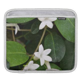Algerian Ivy iPad sleeve (or for macbook air)