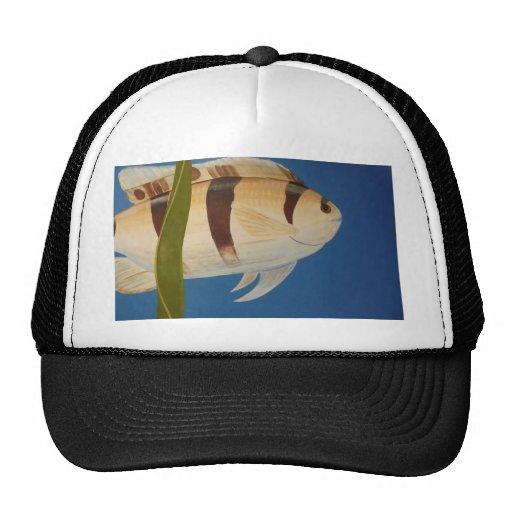 Algo a pescado gorras de camionero