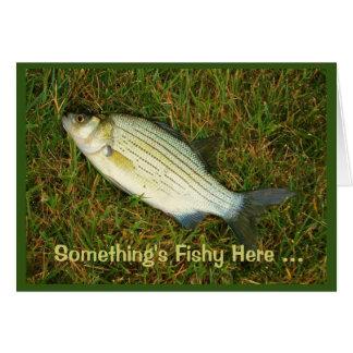 ¡Algo es a pescado aquí - usted nunca parece Tarjeta De Felicitación