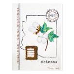 Algodón de Arizona Tarjeta Postal