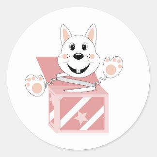 Algodón del conejo de Skrunchkin en caja rosada Pegatinas Redondas